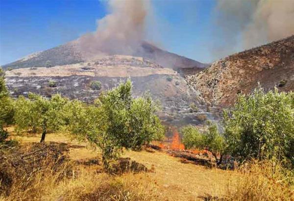Πρώτη εκτίμηση για την πυρκαγιά στον αρχαιολογικό χώρο των Μυκηνών
