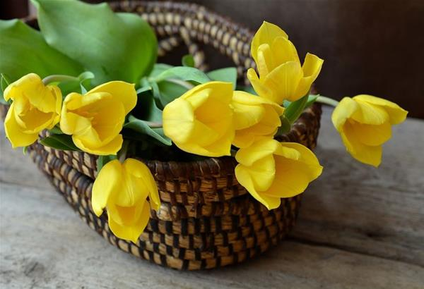 Ποιοι γιορτάζουν σήμερα  Σάββατο 9 Φεβρουαρίου