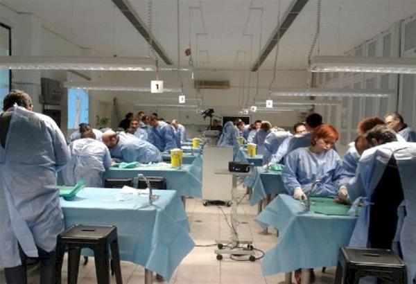 ΑΠΘ: Γιατροί από όλον τον κόσμο εκπαιδεύονται και θεραπεύουν άτομα με προβλήματα στα άνω άκρα