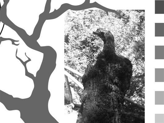 Αέναες Μορφές - Έκθεση ασπρόμαυρης φωτογραφίας του Δημήτρη Αθανασιάδη