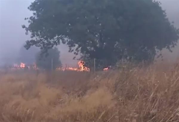 Ο Δήμος Σαρωνικού σε κατάσταση έκτακτης ανάγκης λόγω της πυρκαγιάς: Εκκενώνονται Ανάβυσσος και γύρω περιοχές