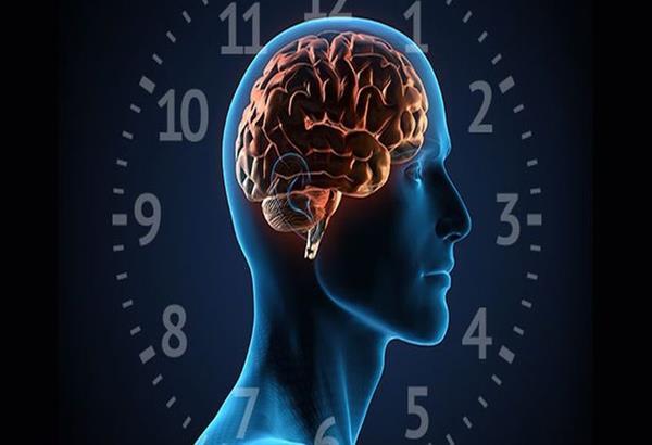 Τι είναι ο κιρκάδιος ρυθμός - το αρχαιότερο από όλα τα ρολόγια που ελέγχει τη ζωή μας
