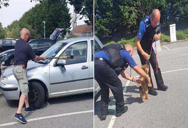 Αγγλία: Άντρας σπάει παράθυρο αυτοκινήτου για να σώσει σκυλί που πέθαινε από τη ζέστη - Βίντεο