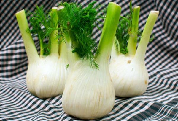 Eλληνικά αρωματικά φυτά - Υπερτροφές της Ελληνικής γης στο πιάτο μας