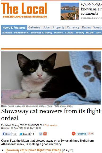 Αδέσποτος γάτος ταξίδεψε από την Αθήνα στη Ζυρίχη στην ρόδα του αεροπλάνου