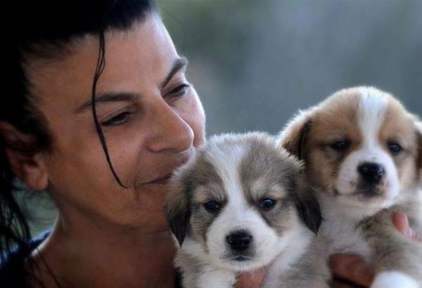 Αφιέρωμα στο Never Walk Alone. Μαρίκα Καμάρη. Μια γυναίκα φύλακας άγγελος για χιλιάδες αδέσποτα σε όλη την Ελλάδα