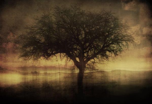 Έκθεση φωτογραφίας: Αναπολώντας το παρελθόν