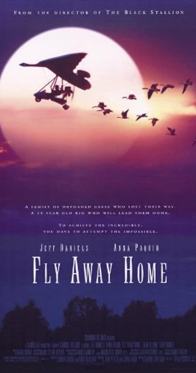 Πόστερ της ταινίας «Τα Φτερουγίσματα (1996)   Fly Away Home»