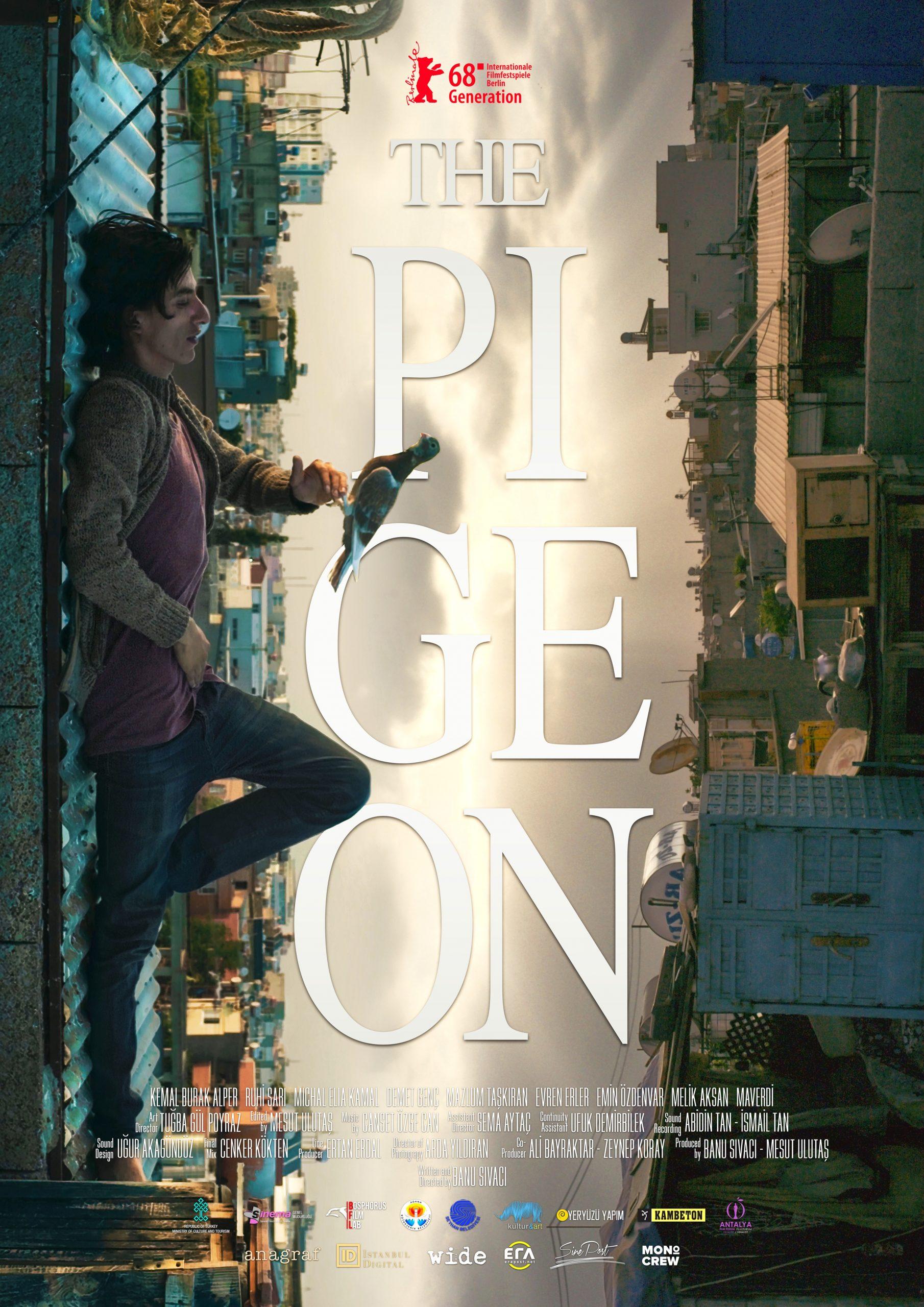 Πόστερ της ταινίας «Το Περιστέρι (2018) | The Pigeon»