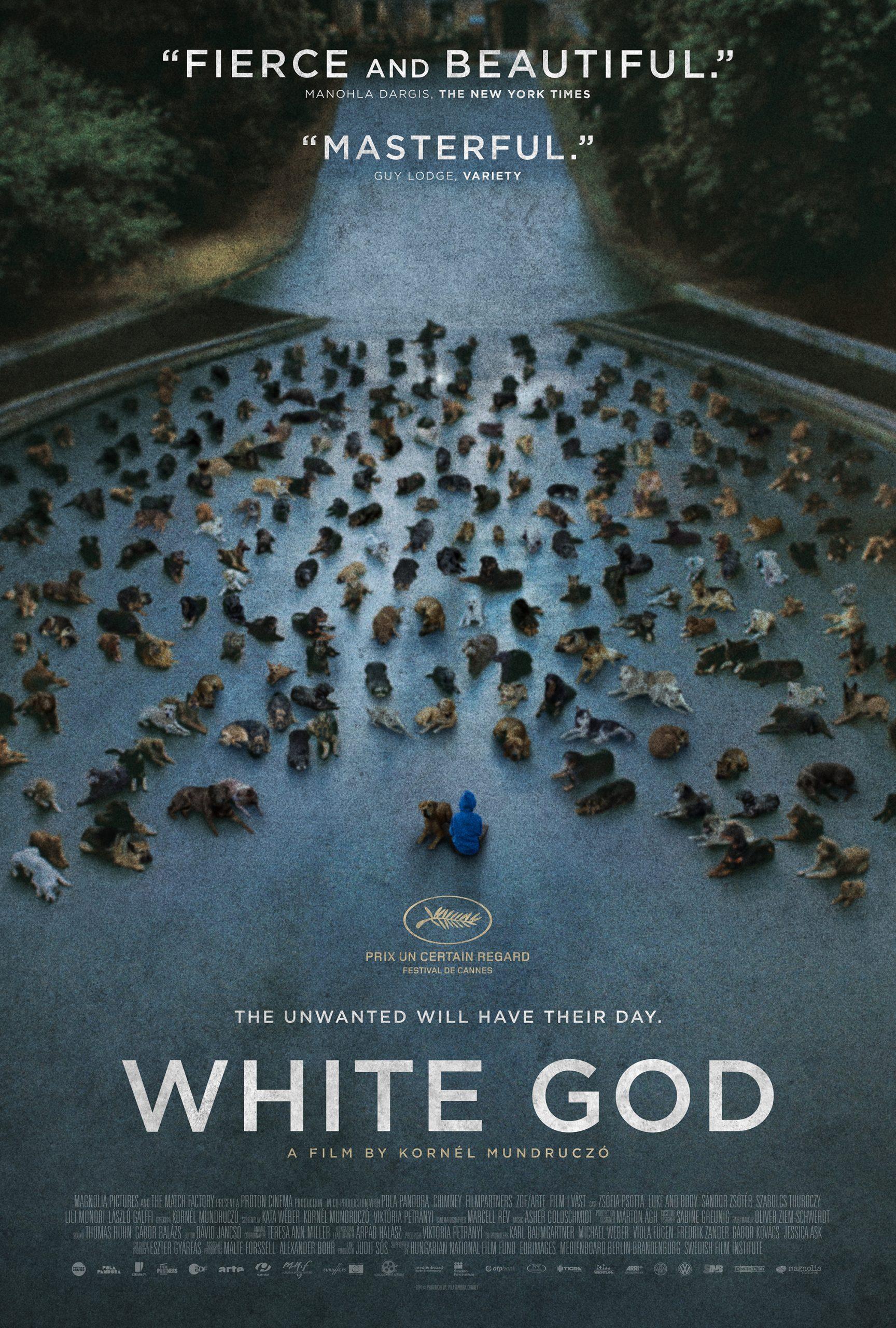 Πόστερ της ταινίας «Λευκός Θεός (2014)   White God»